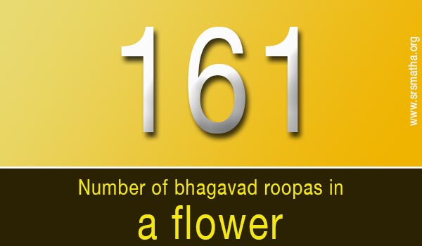 Welcome to Sri Raghavendra Swamy Matha Mantralayam